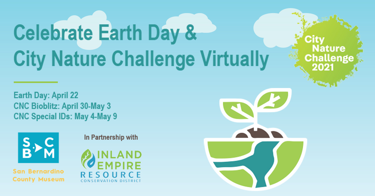 2021 Earth Day and Nature Challenge - April 22 - May 9
