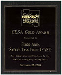 Picture of CESA Gold Award for Flood Area Safety Task Force