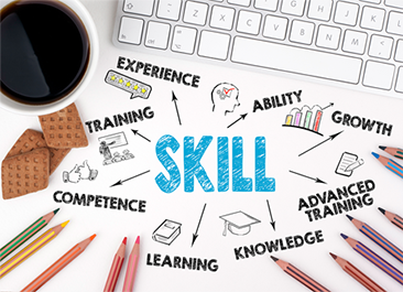 Skills, experience, growth, learning, education, training, competence and knowledge